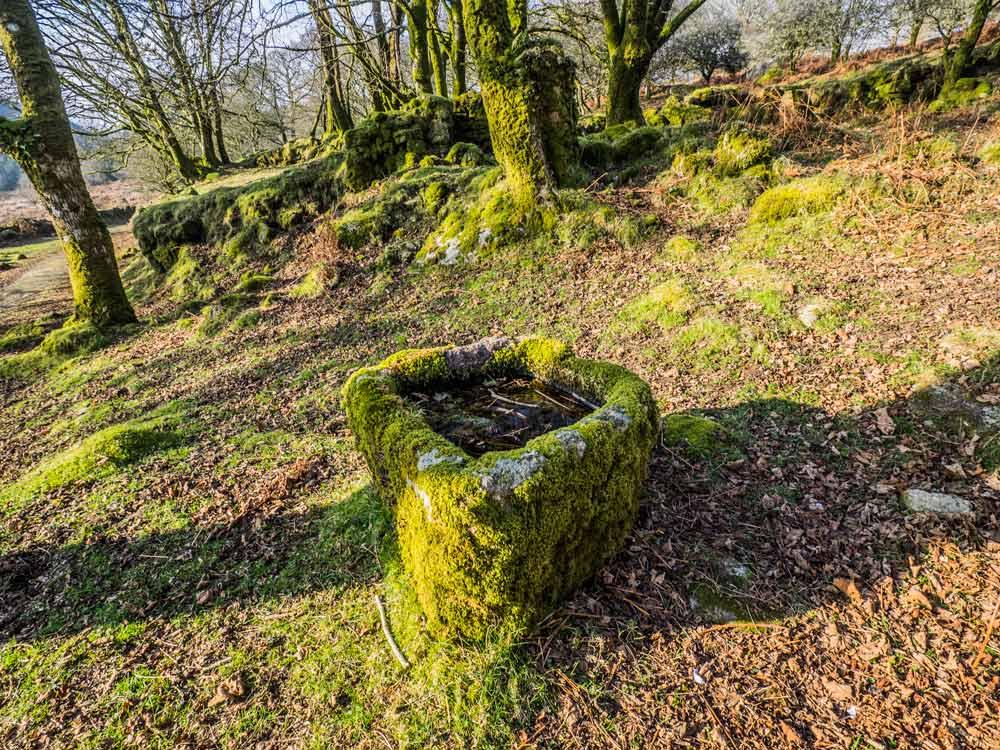 Deancombe-Farm-Stone-Trough-(244-m)