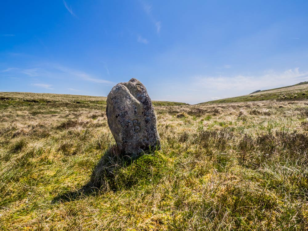 l-bs-boundary-stone-in-marshy-ground-527-m1