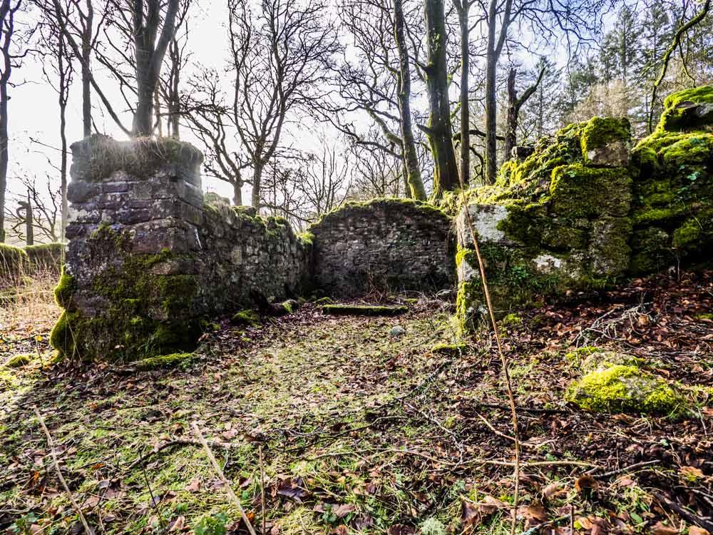 Fernworthy-Farm-Ruins2