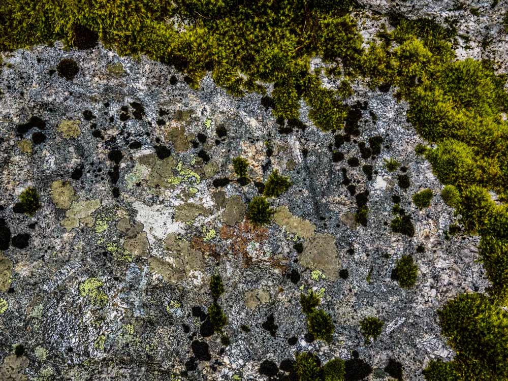 PCWW-Marker,-Granite,-No.18,-1917-Inscription-on-Tor-(516-m)_2