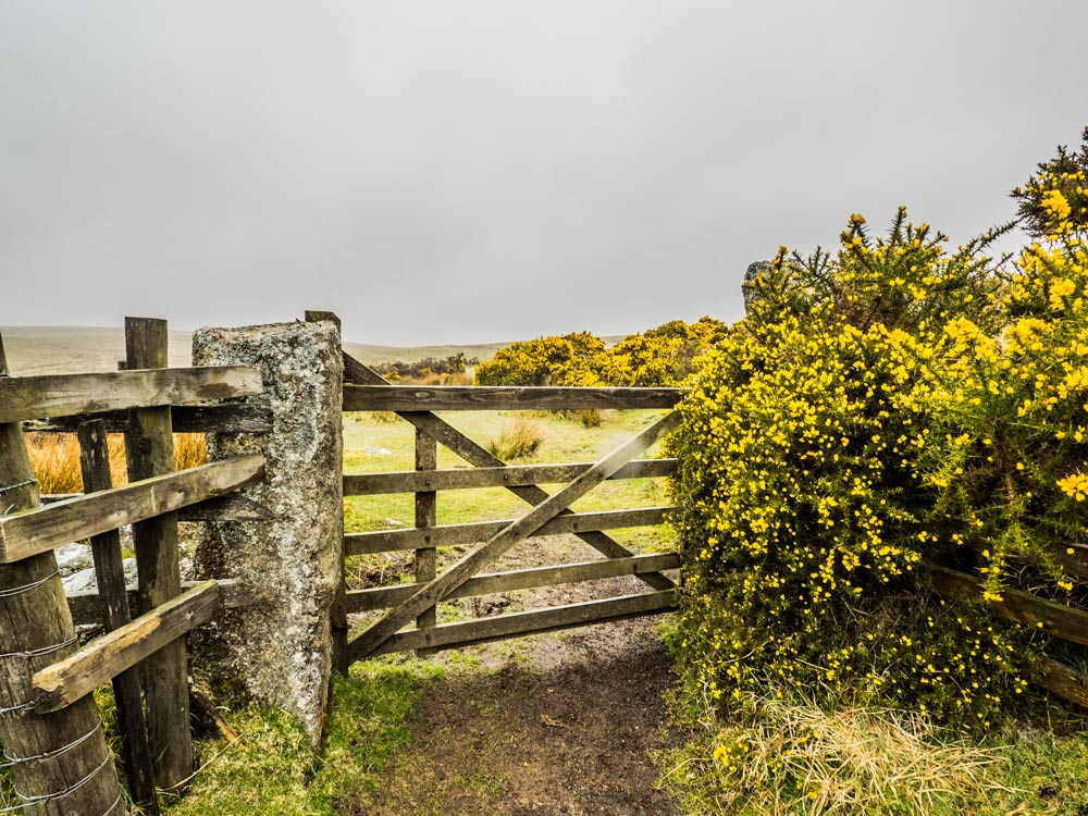 Gate-near-Swincombe-(322-m)