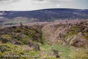 Tinners' Gullies, Gulfs, Gerts, Pits and Workings