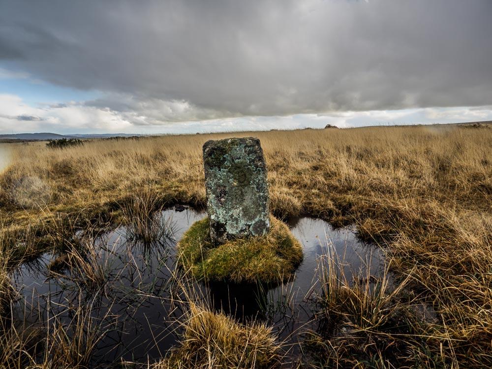 PUDC-Boundary-Stone,-Holne-Moor,-No.08-(340-m)1