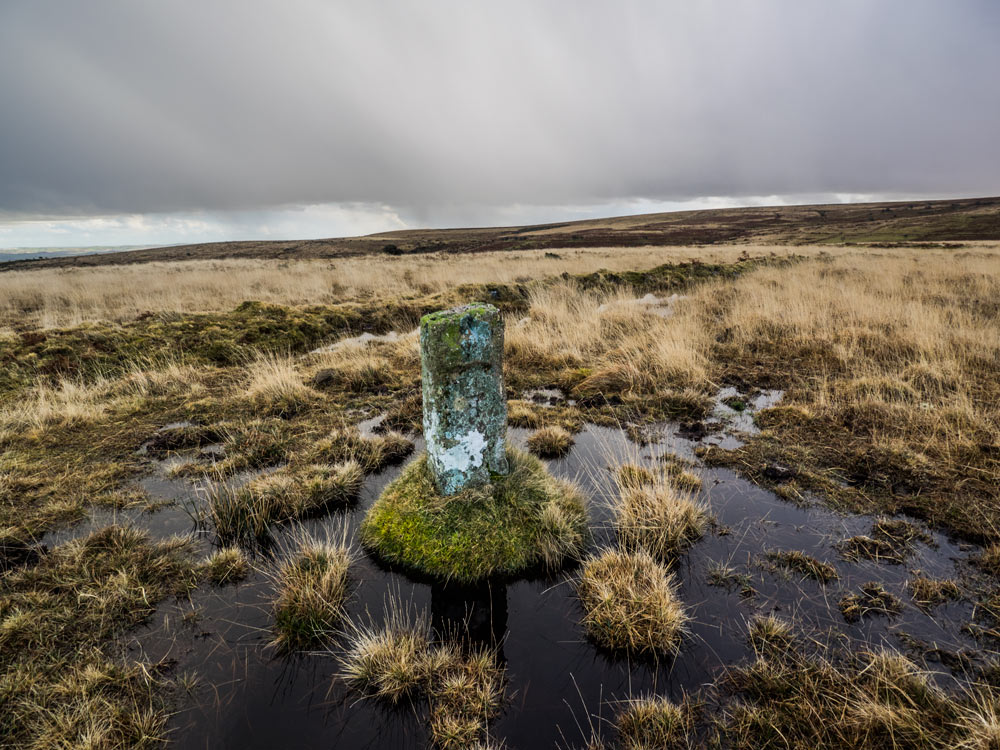 PUDC-Boundary-Stone,-Holne-Moor,-No.10-(350-m)1