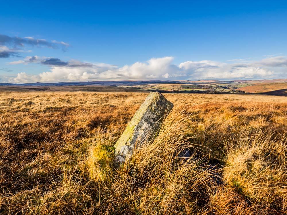 PUDC-Boundary-Stone,-Holne-Moor,-No.19-(465-m)1