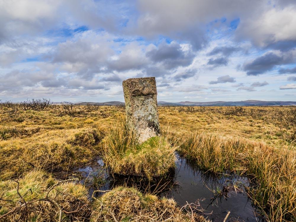 PUDC-Boundary-Stone,-Holne-Moor,-No.35-(374-m)1