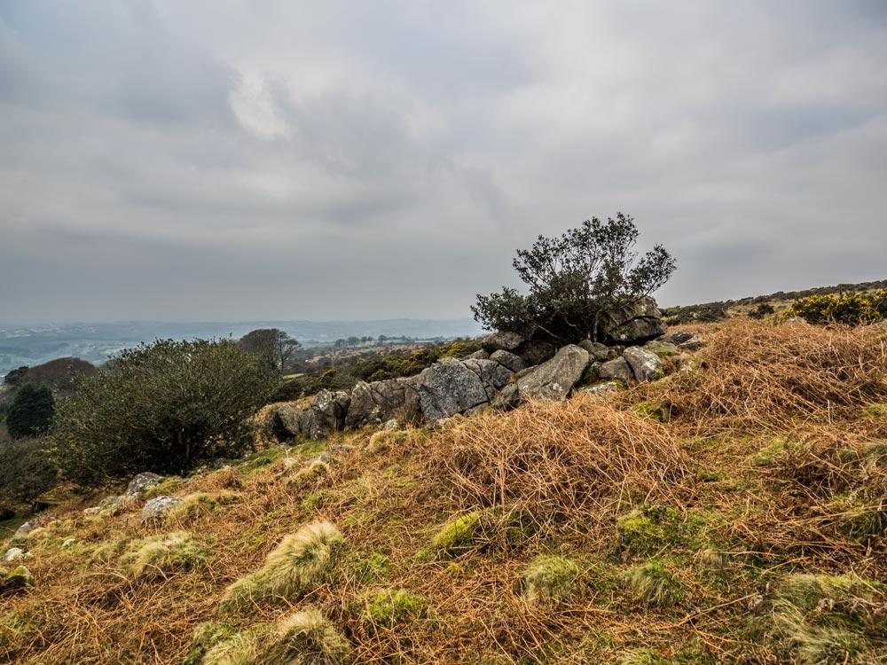 Collard-Tor-Lower-Outcrops-(261-m)1