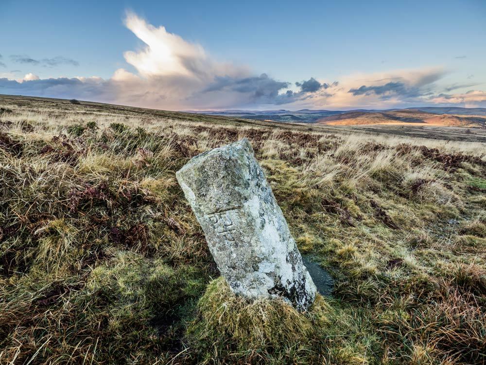 PUDC-Boundary-Stone,-Holne-Moor,-No.29-(415-m)1