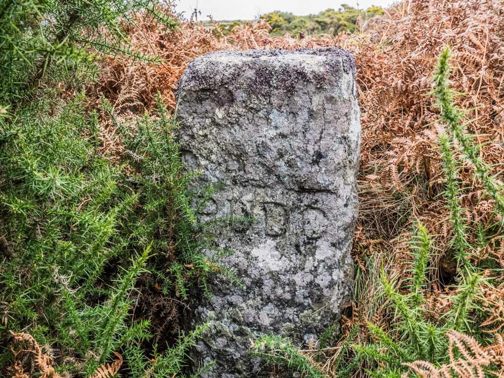 PUDC-Boundary-Stone,-Holne-Moor,-No.46-(305-m)1