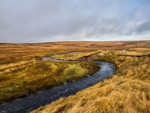 Prominent River Bends
