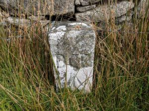 Dartmoor Prison Stones, Director of Convict Prisons (DCP)