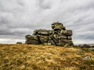 Dartmoor Bog Hoppers' Peaks (a distinct, named area of the moor which is at least 500m above sea level)