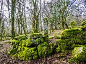 Farming on Dartmoor